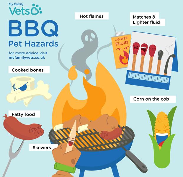 bbq-pet-hazards-infographic